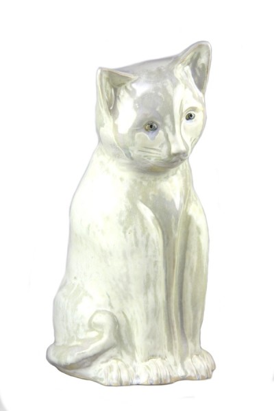 Katze cremeweiß