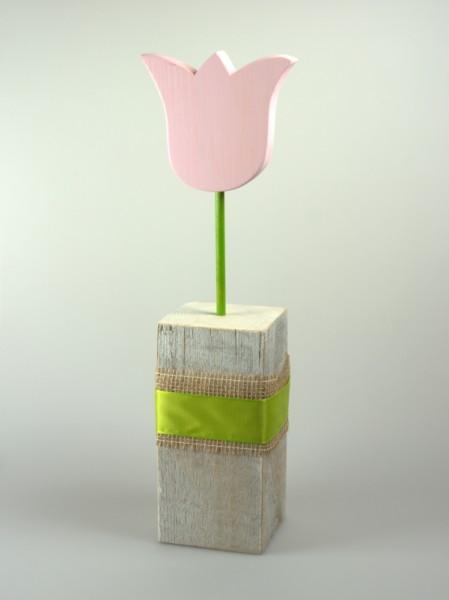 Tulpe auf Sockel rosa
