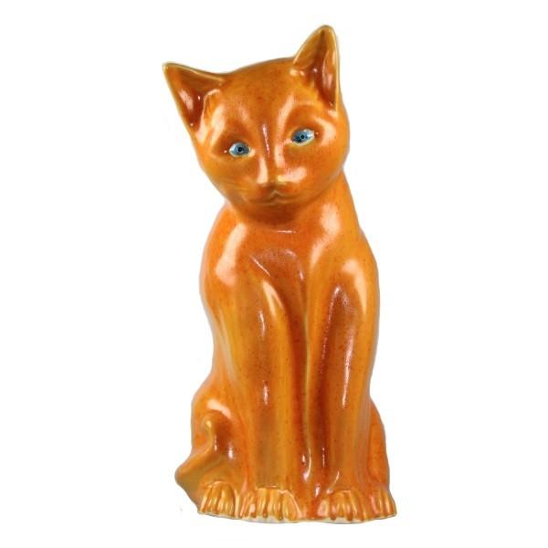 Katze orange